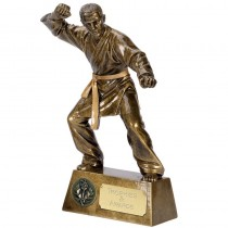 "Male KARATE Trophy 6"", 7.25"" OR 8.75"" FREE ENGRAVING 3 Sizes Martial Arts Award"