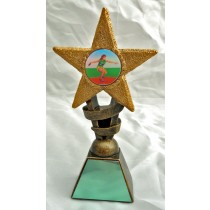 "DISCUSS Star Trophy Female FREE ENGRAVING 2 Sizes 5.5"" or 6.75"" Field Athletics Award"