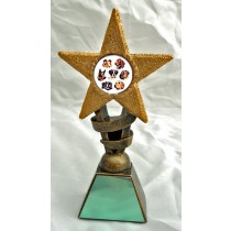 "DOGS Star Trophy 2 Sizes 5.5"" or 6.75"" FREE ENGRAVING Dog Show Award"