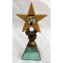 "FENCING Star Trophy 2 Sizes 5.5"" or 6.75"" FREE ENGRAVING Personalised Award"