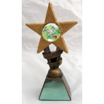 "GARDENING Star Trophy FREE ENGRAVING 2 Sizes 5.5"" or 6.75"" Personalised Award"